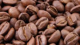 Ejecutivo evalúa traer 200 mil quintales de café para abastecer el mercado 260x146 - Ejecutivo evalúa traer 200 mil quintales de café para abastecer el mercado