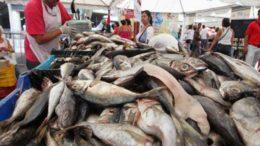 Consumo de pescado en Venezuela se quintuplicó 260x146 - Consumo de pescado en Venezuela se quintuplicó