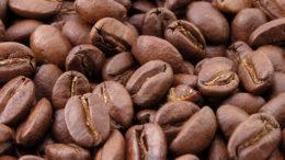 Venezuela evalúa exportar frutas y café a Rusia 260x146 - Venezuela evalúa exportar frutas y café a Rusia