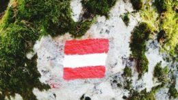 Histórico Austria emite bonos de deuda a 100 años 260x146 - ¡Histórico!  Austria emite bonos de deuda a 100 años