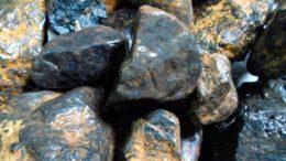 Venezuela produjo la primera tonelada de coltán 260x146 - Venezuela produjo la primera tonelada de coltán