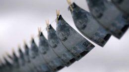 Casi 670 casos de lavado de dinero con criptomonedas detectó Japón 260x146 - Casi 670 casos de lavado de dinero con criptomonedas detectó Japón