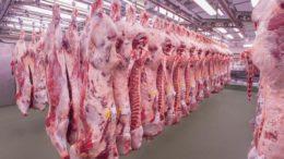China la ventana de crecimiento para el sector porcino de Costa Rica 260x146 - China: la ventana de crecimiento para el sector porcino de Costa Rica