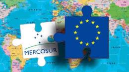 Francia no quiere negociar la carne con el Mercosur 260x146 - Francia no quiere negociar la carne con el Mercosur